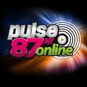 pulse87 NY
