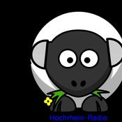 hochrhein-radio