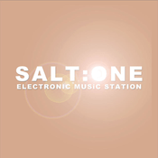 Radio salt-one