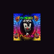 Radio Angel Night