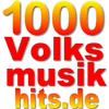 1000volksmusikhits