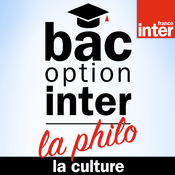 La culture - Bac Philo Option Inter