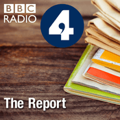 Podcast The Report