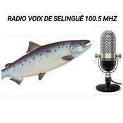 RADIO VOIX SELINGUÉ FM