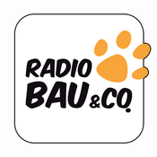 Radio 105 - Bau & Co