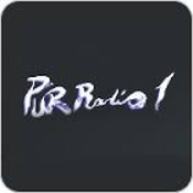 Radio purradio1