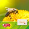 MDR JUMP Umschau Quicktipp