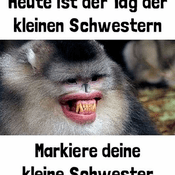 Sguenther Moeth