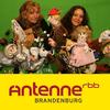Der Zappelduster-Podcast | Antenne Brandenburg vom rbb