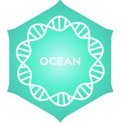 POSITIVITY Ocean
