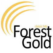 Rádio Classic Hits Forest Gold